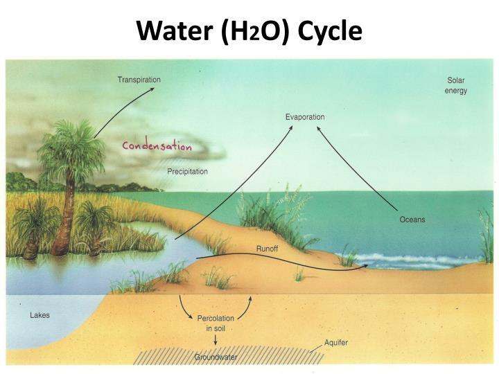 Water h 2 o cycle