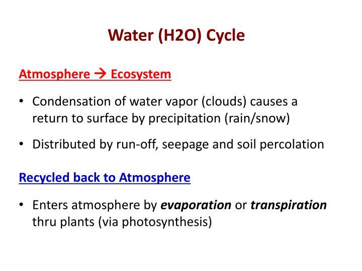 Water h2o cycle