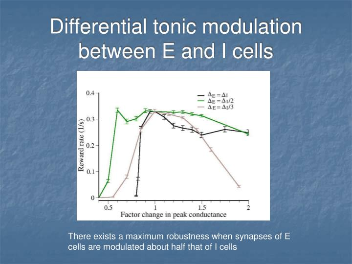 Differential tonic modulation between E and I cells