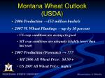 montana wheat outlook usda