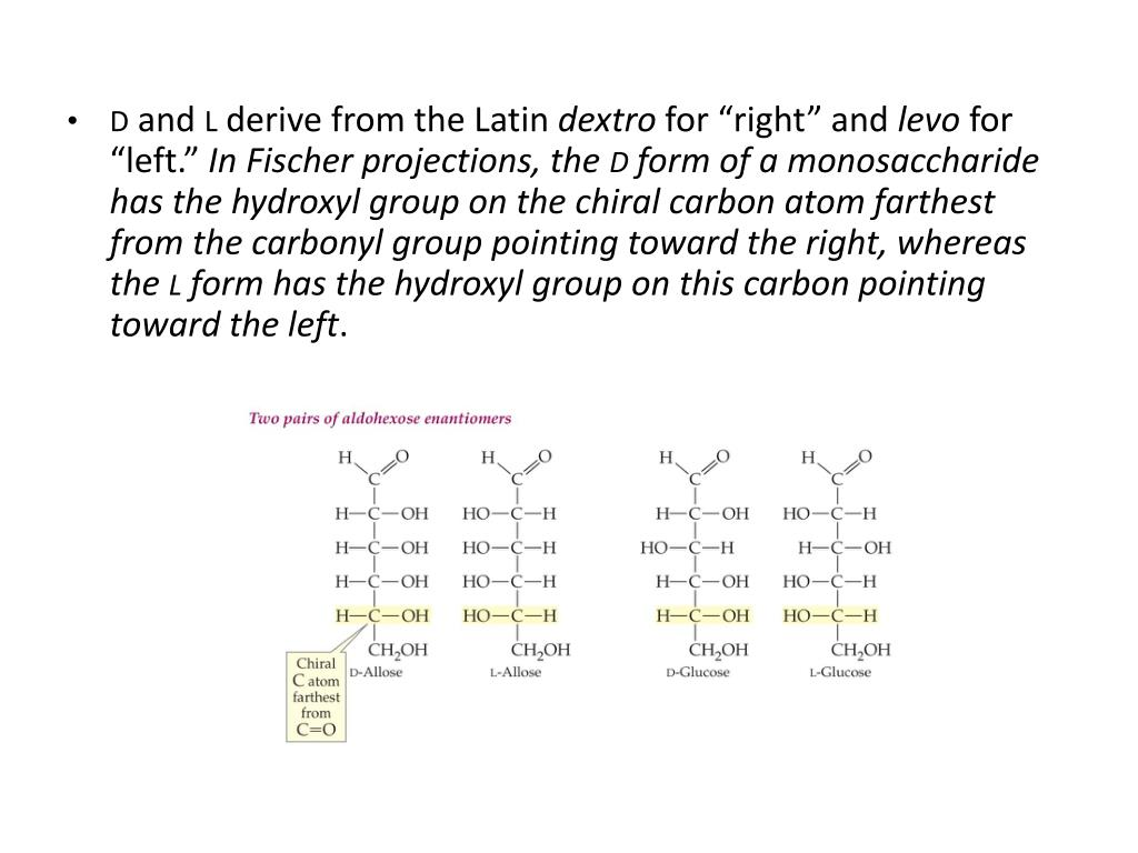 PPT - 21 2 Handedness of Carbohydrates PowerPoint