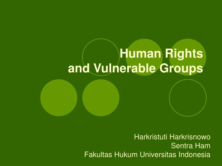 human rights and vulnerable groups n.