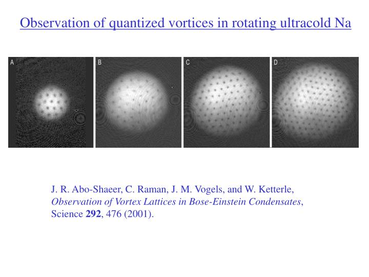 Observation of quantized vortices in rotating ultracold Na