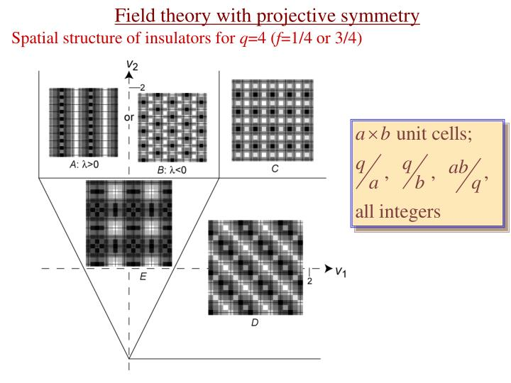 Field theory with projective symmetry