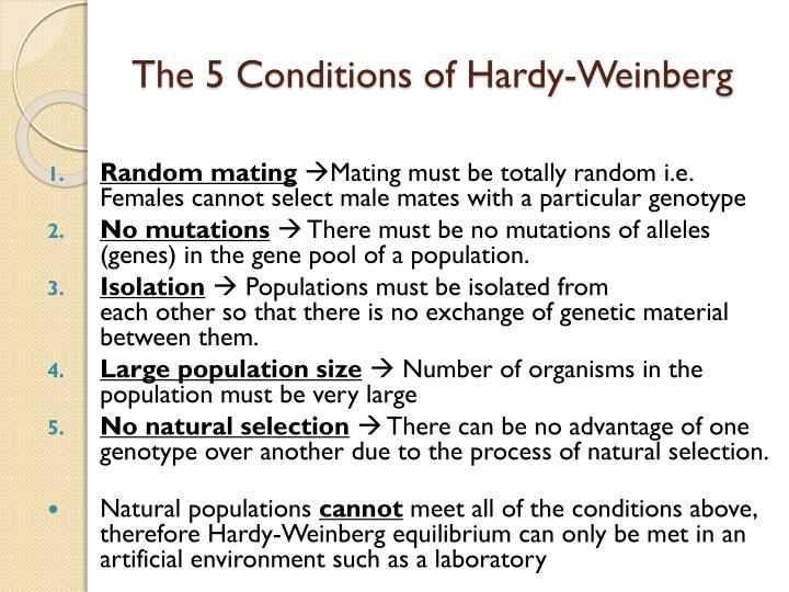Image result for hardy-weinberg conditions