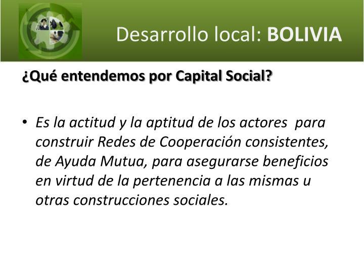 Desarrollo local bolivia1