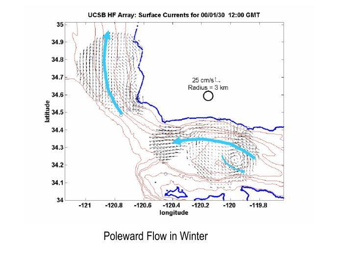 Poleward Flow in Winter