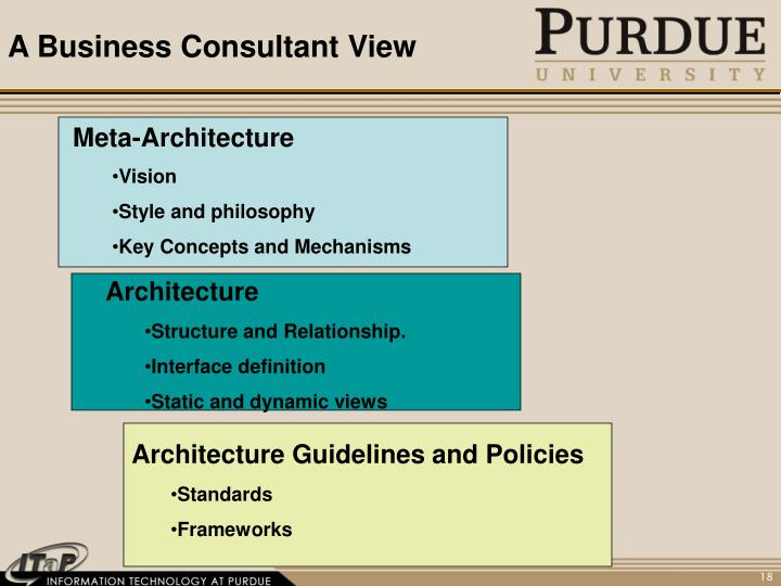 A Business Consultant View