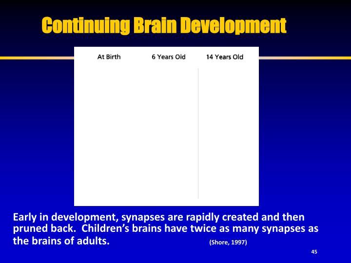 Continuing Brain Development