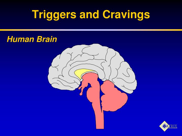 Triggers and Cravings