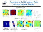 examples of ao simulation data and intermediate results