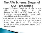 the apa scheme stages of apa processing
