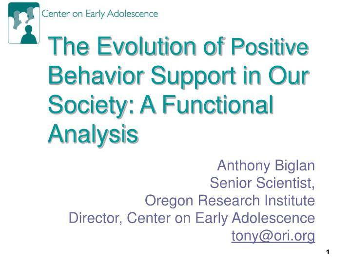 the evolution of positive behavior support in our society a functional analysis n.
