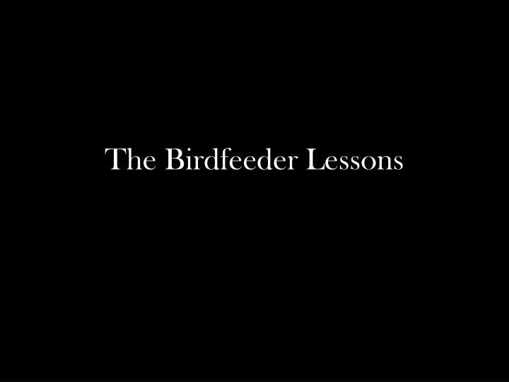 The Birdfeeder Lessons