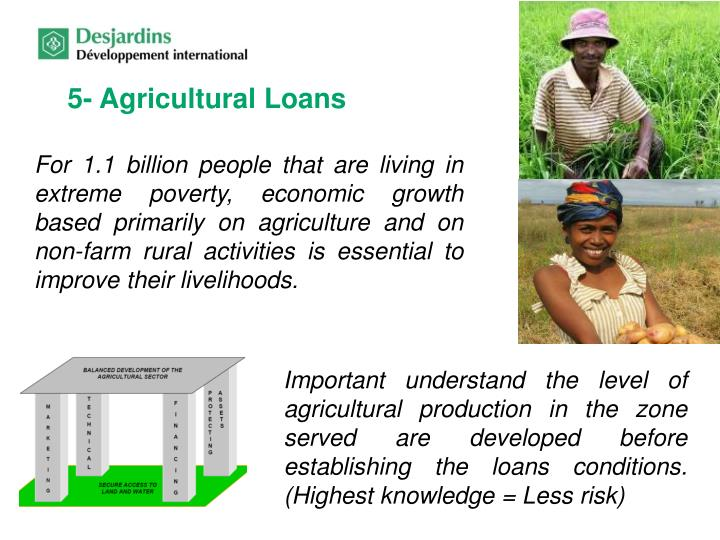 5- Agricultural Loans