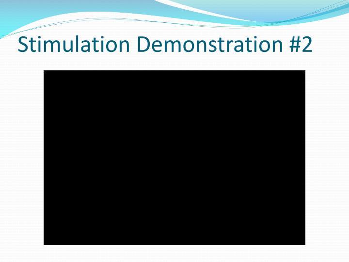 Stimulation Demonstration #2