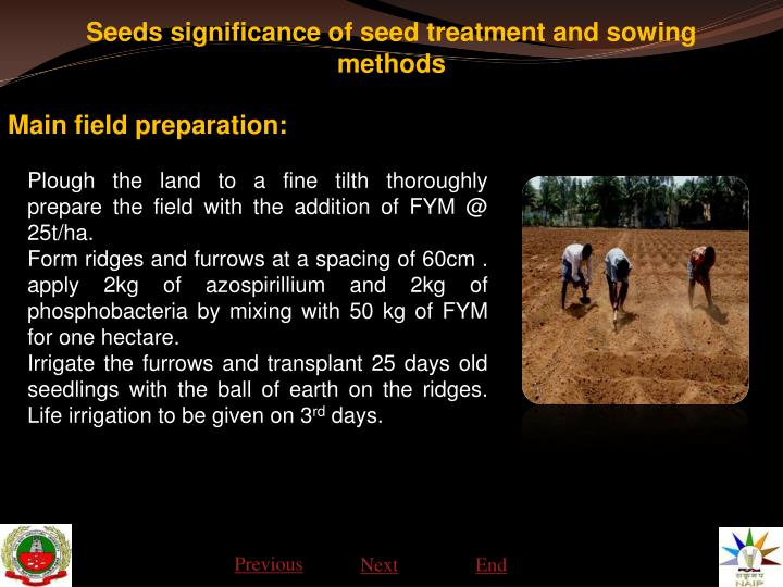 Seeds significance of seed treatment and sowing methods