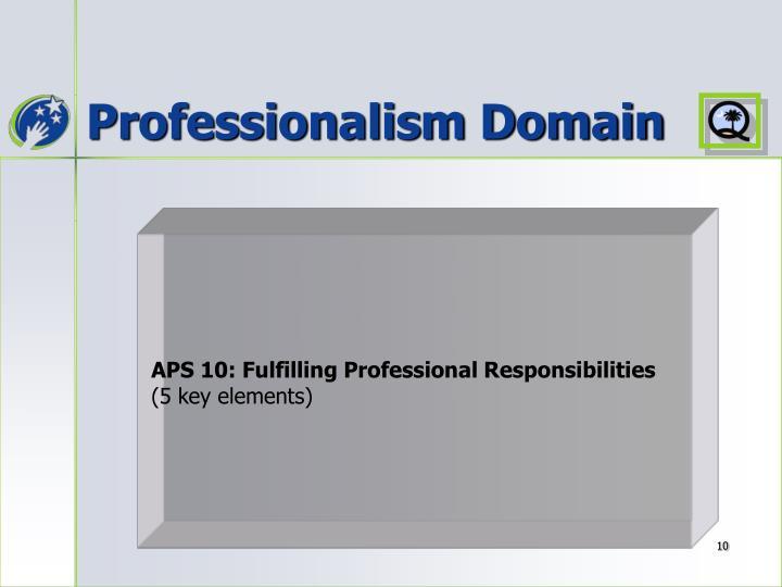 Professionalism Domain