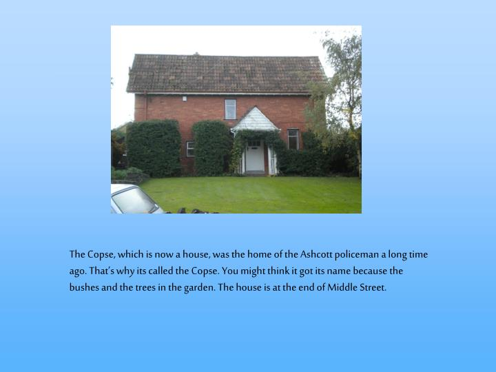 The Copse, which is now a house, was the home of the Ashcott policeman a long time ago. That's why its called the Copse. You might think it got its name because the bushes and the trees in the garden. The house is at the end of Middle Street.