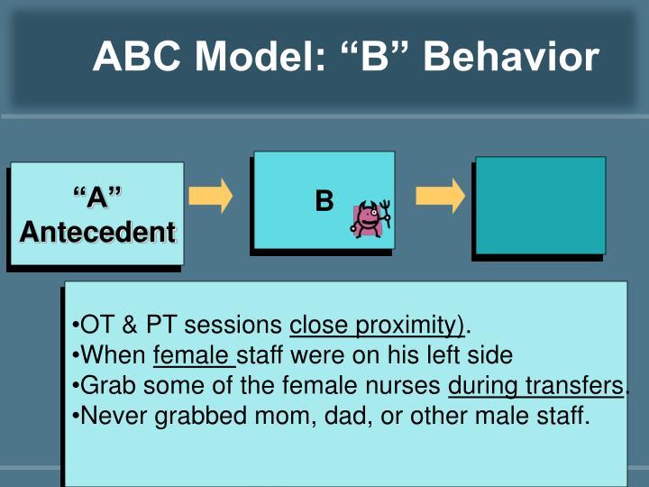 "ABC Model: ""B"" Behavior"