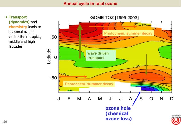 Annual cycle in total ozone