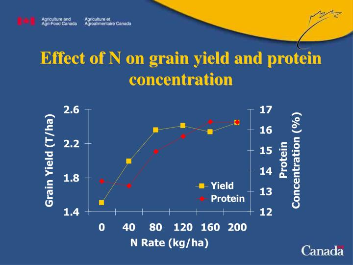 Effect of n on grain yield and protein concentration