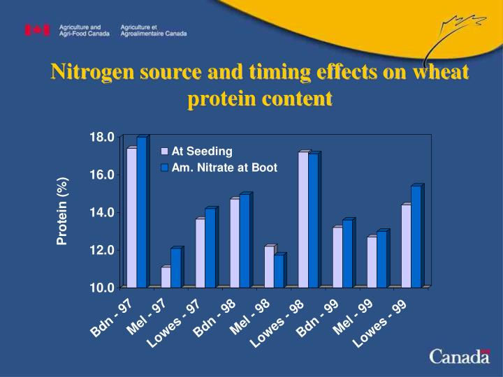 Nitrogen source and timing effects on wheat protein content