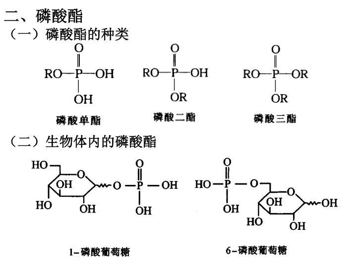 二、磷酸酯