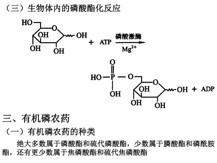 (三)生物体内的磷酸酯化反应