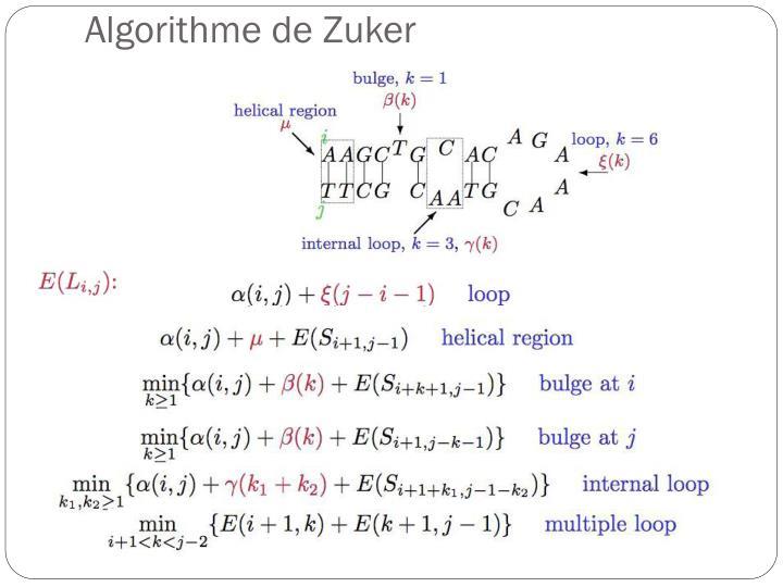 Algorithme de