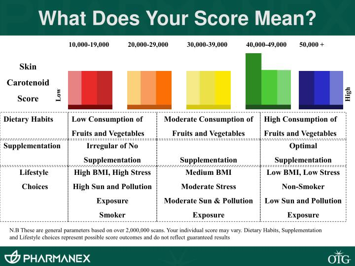 What Does Your Score Mean?