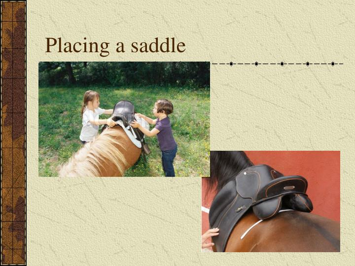 Placing a saddle