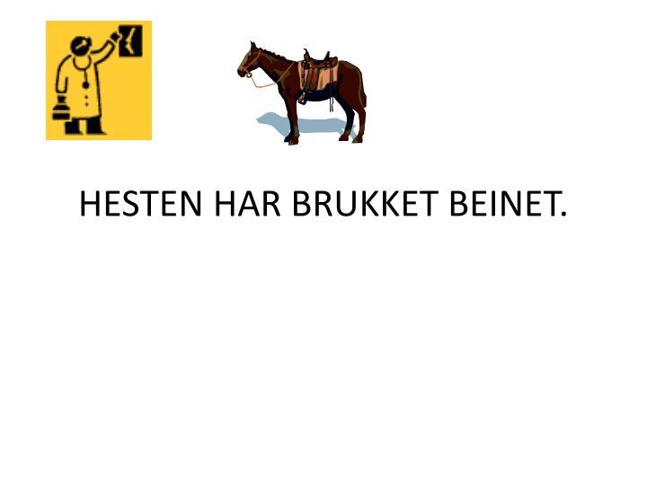 HESTEN HAR BRUKKET BEINET.