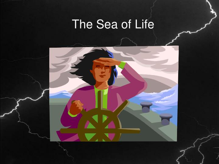 The Sea of Life