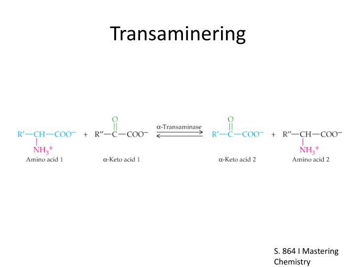 Transaminering