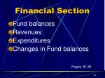financial section5
