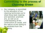 committing to the process of cleaning green4