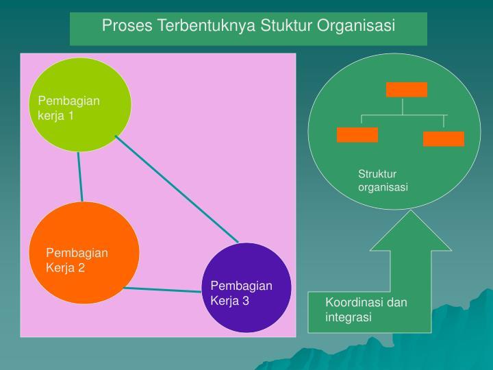 Proses Terbentuknya Stuktur Organisasi