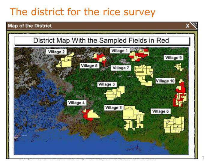 The district for the rice survey