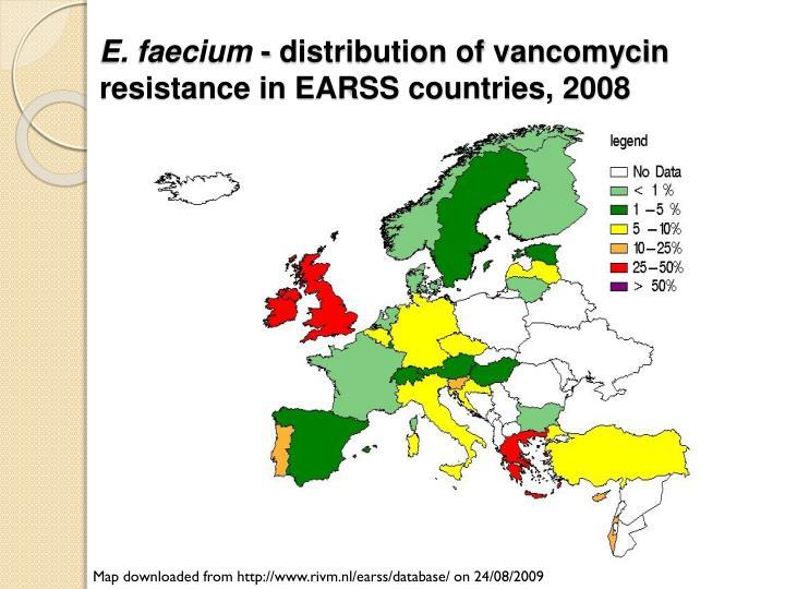E. faecium