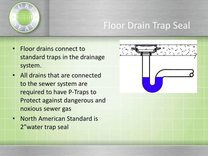 Floor Drain With Trap Primer Connection Carpet Vidalondon