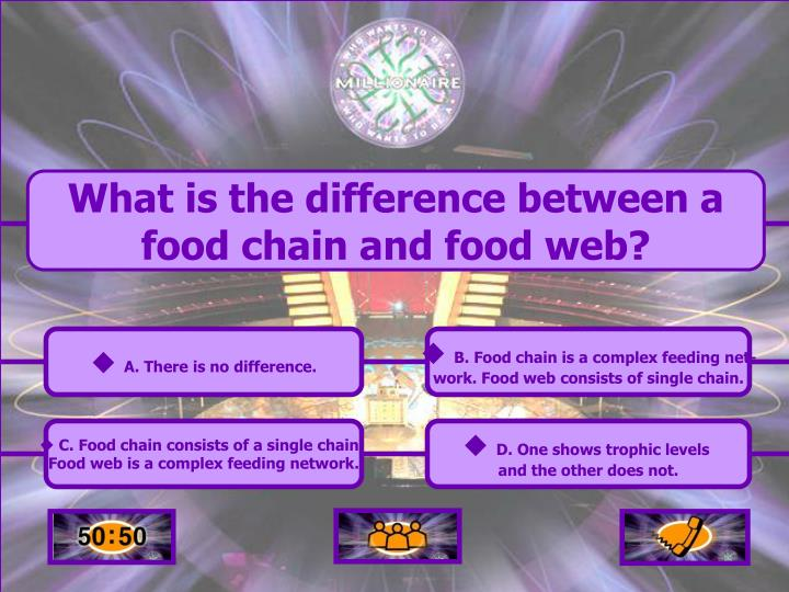 What is the difference between a food chain and food web?