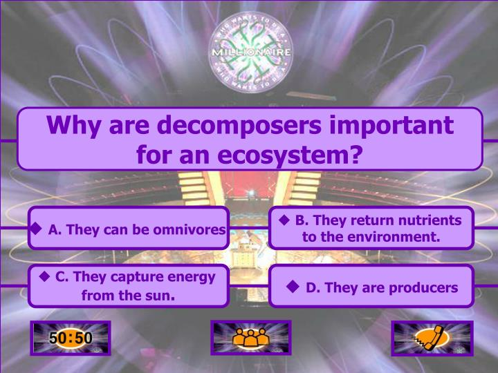 Why are decomposers important for an ecosystem?