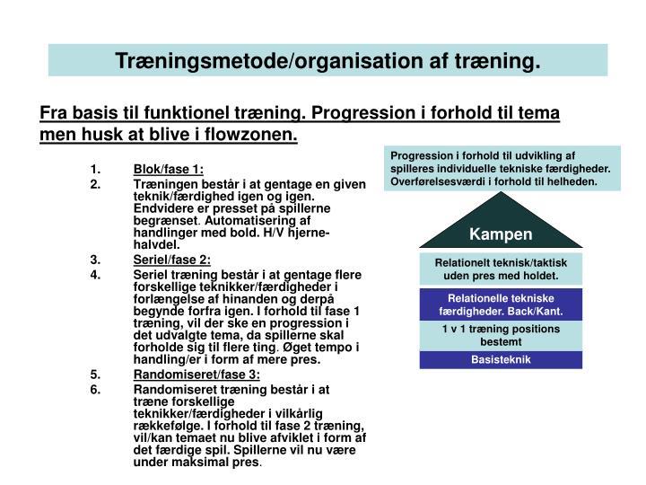 Fra basis til funktionel træning. Progression i forhold til tema men husk at blive i flowzonen.