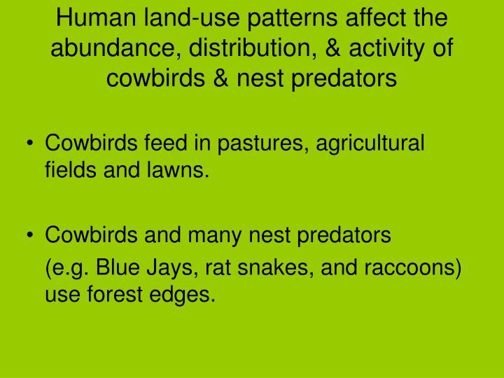 Human land-use patterns affect the abundance, distribution, & activity of cowbirds & nest predators