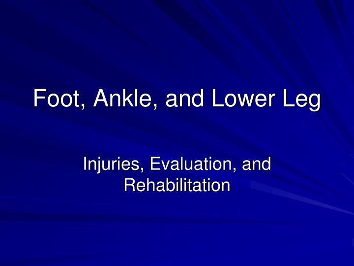 foot ankle and lower leg n.