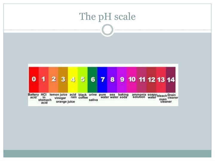 the ph scale n.