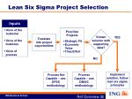 lean six sigma project selection