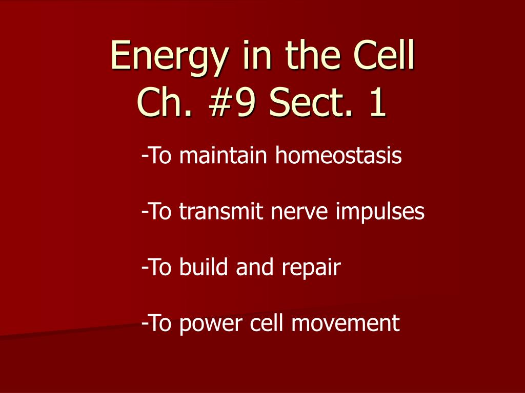 Energy In The Cell Ch 9 Sect 1 N