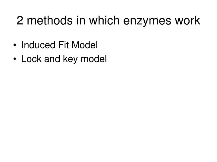 2 methods in which enzymes work